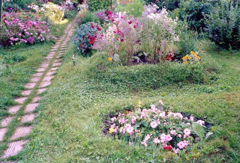 Фото сайта Гуманное садоводство