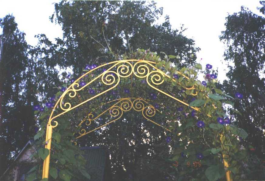 арка (фото 1115)