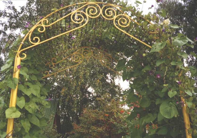 арка (фото 1134)