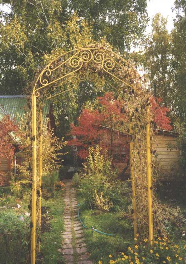 арка (фото 1143)