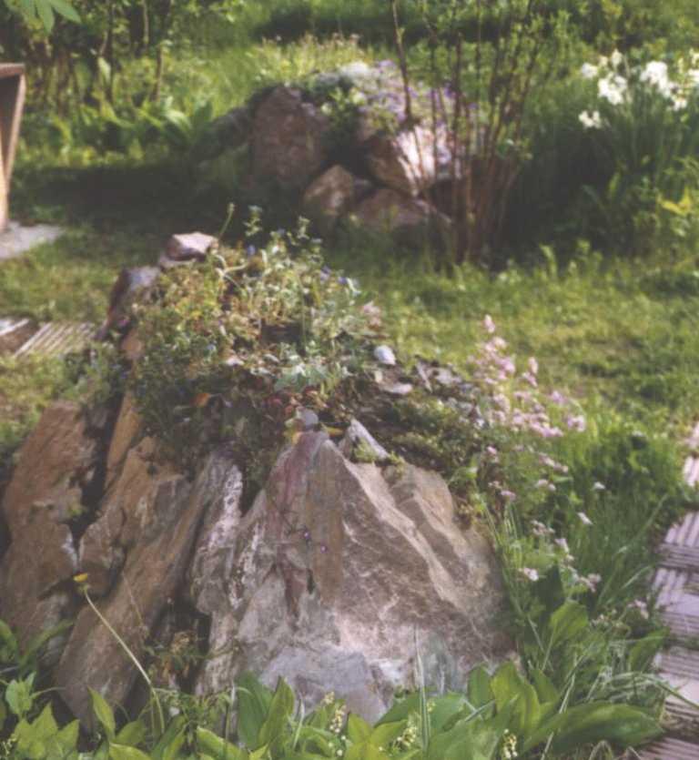 горка (фото 1174)