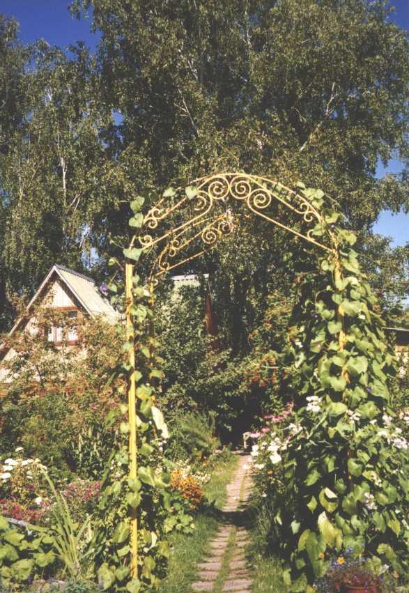 арка (фото 1414)