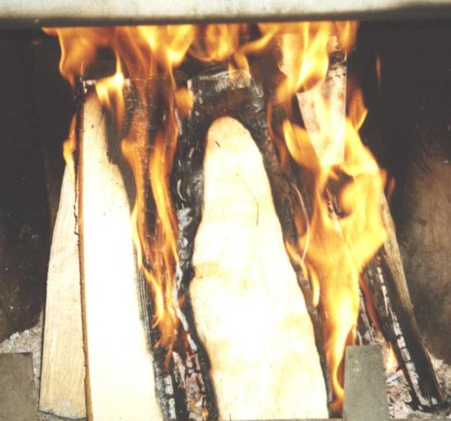 пламя (фото 1443)