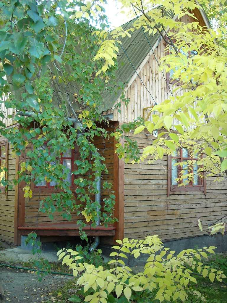 дом (фото 6816)
