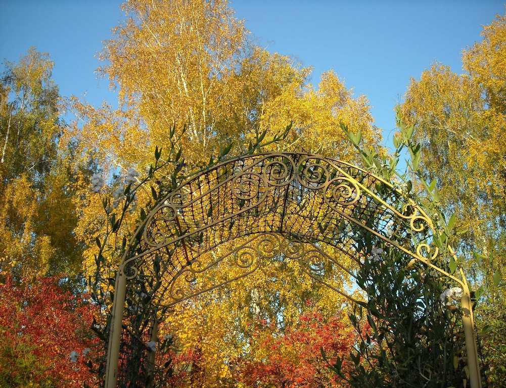 общий вид, арка (фото 6976)