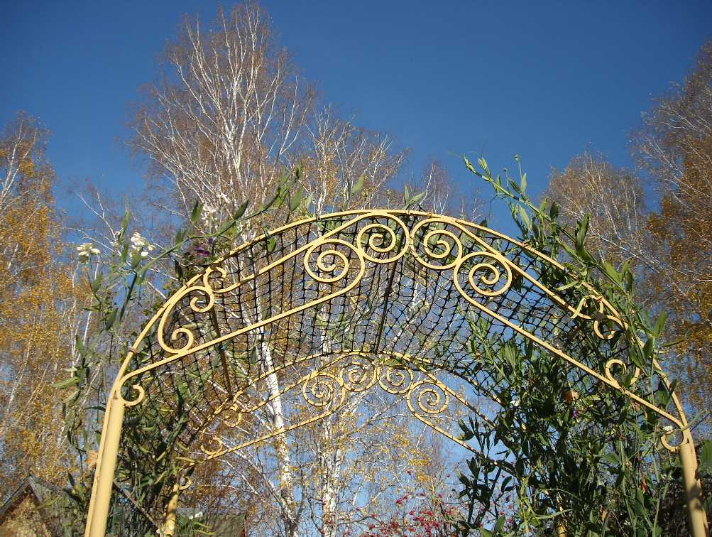 арка (фото 7122)