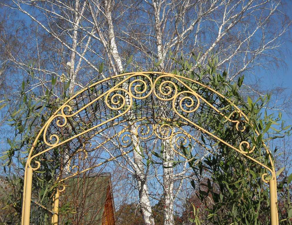 арка (фото 7202)