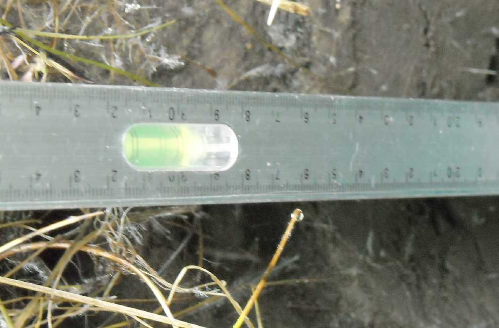 почва (фото 7288)